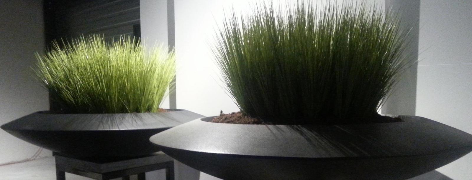 Joachim Normon - Plantenbakken